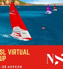 Three col nsl virtual cup cr